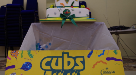 Slough District Cub 100 Year Promise Party